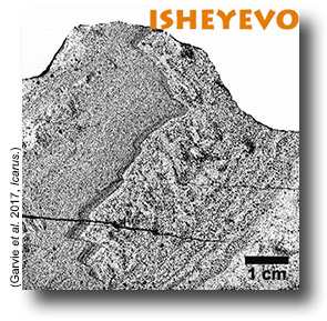 Isheyevo meteorite. Sample ASU#1580_11, from Garvie, et al., 2017.