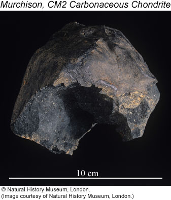 Photo of Murchison meteorite specimen, copyright by the Natural History Museum, London.