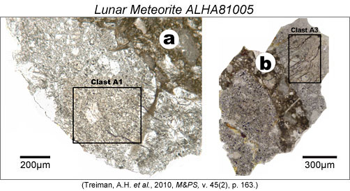 Clasts in ALHA81005.