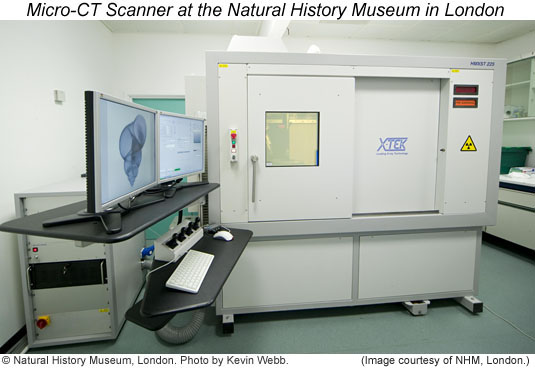 Photo by Kevin Webb of the micro-CT scanner at the NHM London.
